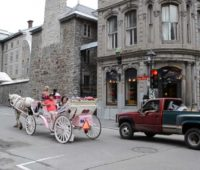Caleche Rides in Old Montreal